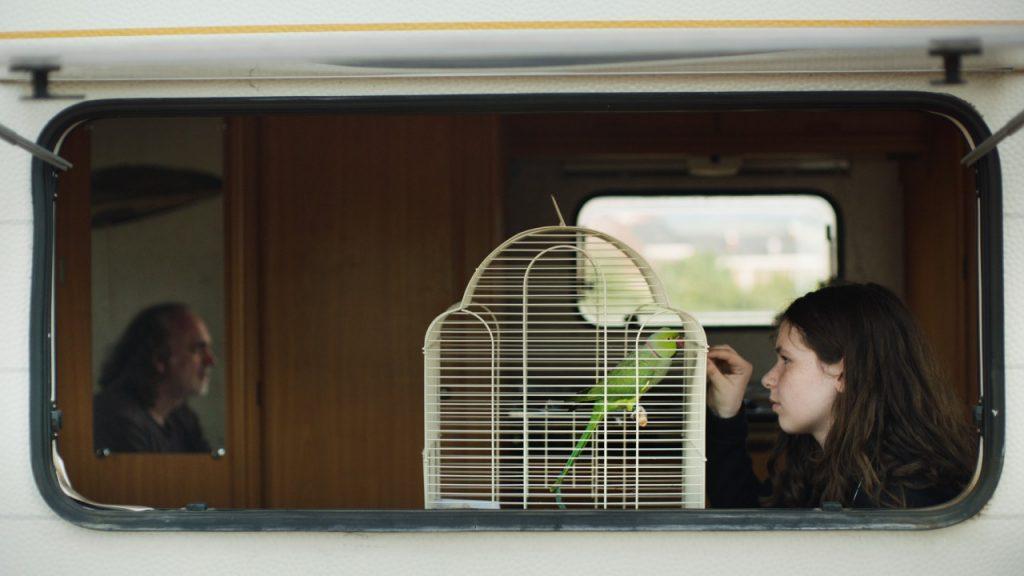"""غدا.. فيلم """"مجرة أندروميدا"""" يفتتح عروض مسابقة أسبوع النقاد بمهرجان القاهرة"""