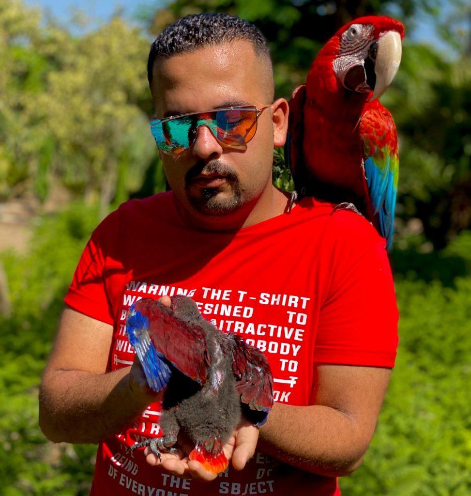 الكاتب أحمد حمدى أبو الفتوح يشارك بكتاب«حياة البغبغانات»بالقاهرة للكتاب