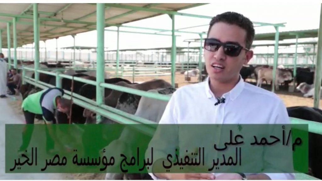 """""""مصر الخير تعلن عن هدايا للمتبرعين ضمن حملة """"صك الأضحية"""""""