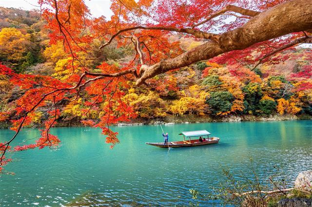 الوقوع في حب خريف اليابان