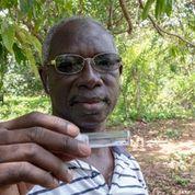 """تنطلق الحملة المعنونة   """"50 يوماً لإنقاذ 5 ملايين شخص"""" في 14 أكتوبر وتستمر لمدة 50 يومًا وتهدف إلى حماية 5 ملايين شخص من العمى النهري وداء الفيلاريات اللمفي"""