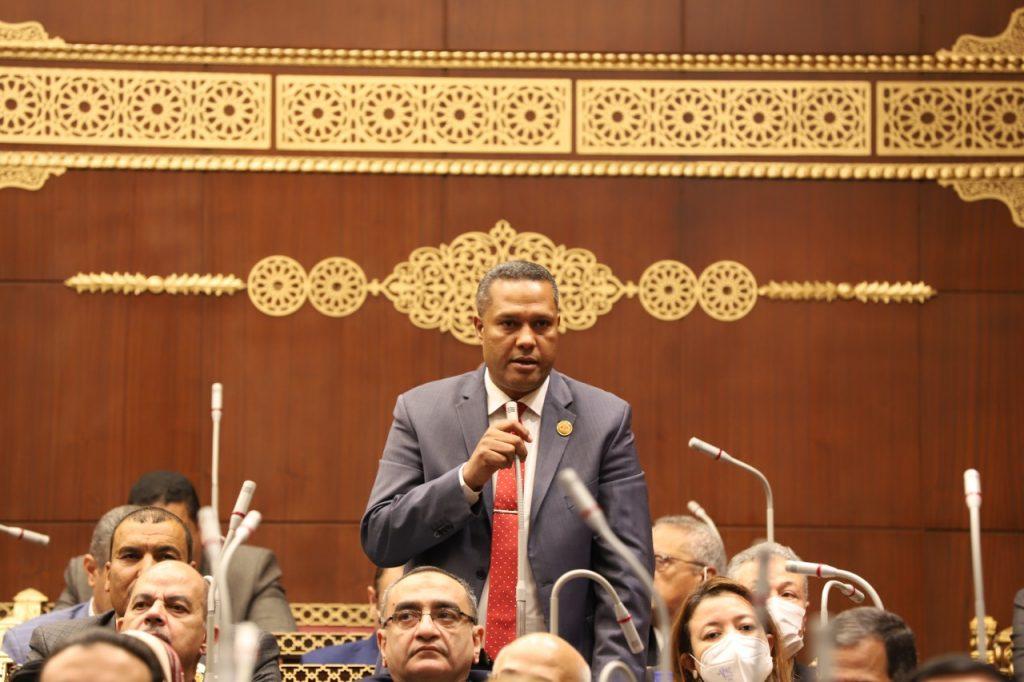 النائب محمد حمزه امام الجلسة العامة لمجلس الشيوخ